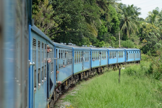 DG237551. 10.35 Colombo - Kandy train. East of Balana. Sri Lanka. 12.1.16.