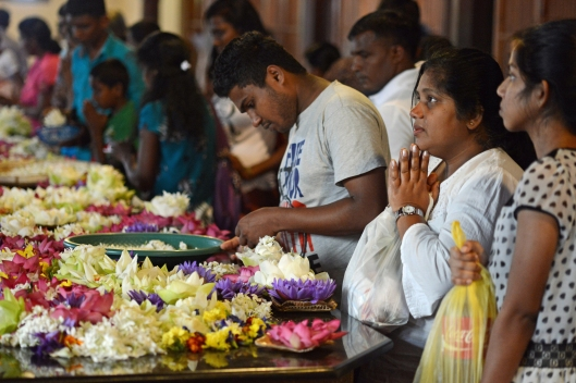 DG237612. Offering prayers and flowers.Temple of the tooth. Kandy. Sri Lanka. 13.1.16.