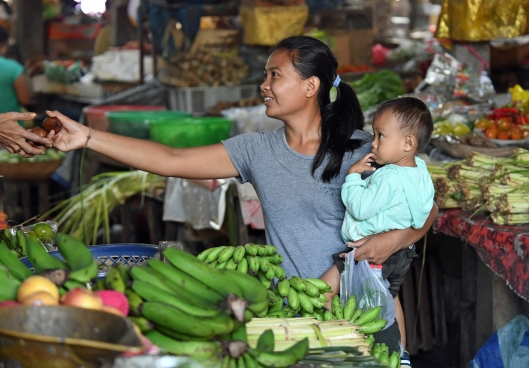 dg264443-buying-salak-fruit-at-the-local-market-pejeng-ubud-bali-indonesia-7-2-17