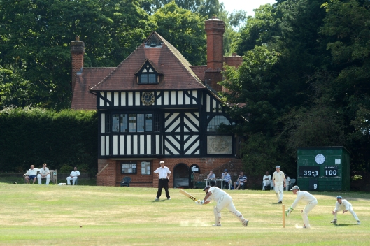 DG219537. Cricket on the green. Tilford. Surrey. 8.8.15