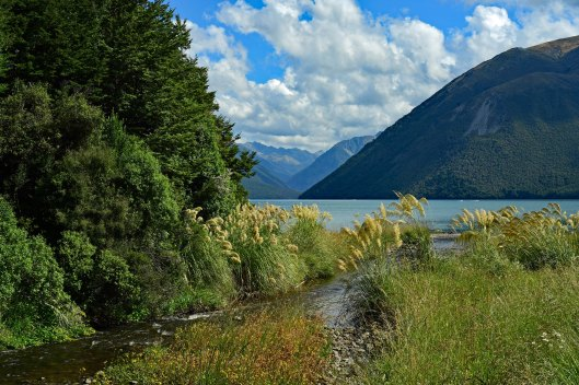 dg315993. lake rotoiti. nelson lakes national park. new zealand. 10.1.19crop