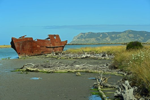 dg316123. wreck of the t. s. s. waverley. wairau lagoons walkway. blenheim. new zealand. 12.1.19crop