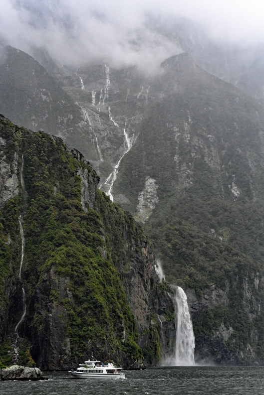dg317742. milford sound. south island. new zealand. 23.1.19