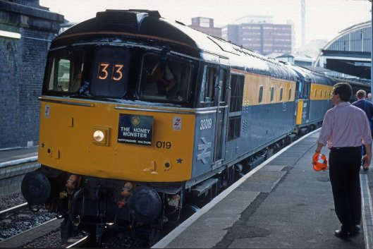 5141. 33019. 33057. The 'Honey Monster' railtour. Paddington. 29.7.95crop