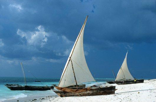 T11229. Dhows on the beach. Nungwi. Zanzibar. Tanzania. Africa. 30.05.01crop